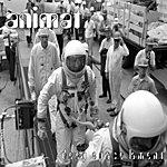 Animat Deep Space Lament Remixes