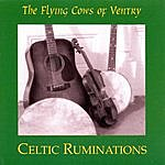 Flying Cows Of Ventry Celtic Ruminations
