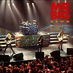 Mr. Big Mr. Big Live (Live At Warfield Theatre, San Francisco, CA, March 28, 1992)