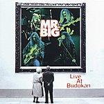 Mr. Big Live At Budokan