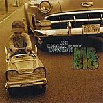 Mr. Big Big, Bigger, Biggest! The Best Of Mr. Big