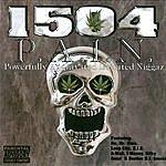 1504 P.A.I.N.