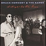 Bruce Hornsby & The Range A Night On The Town