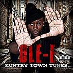 Ole-E Kuntry Town Tunes (Parental Advisory)