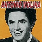 Antonio Molina Antonio Molina Vol.4 - Flamenco Y Copla