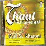 Amjad Ali Khan Thaat Instrumental (Kafi & Khamaj)