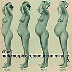 Christ. Metamorphic Reproduction Miracle.