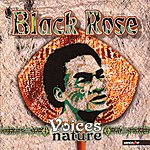 Black Rose Voices Of Nature