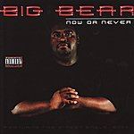 Big Bear Now Or Never