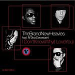 The Brand New Heavies I Don't Know Why I Love You - Seamus Haji And Paul Emanuel Remix Dub