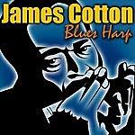 James Cotton Blues Harp