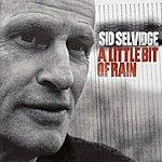Sid Selvidge A Little Bit Of Rain