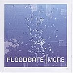 Floodgate More