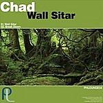 Chad Wall Sitar
