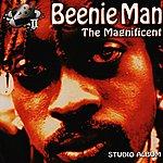 Beenie Man The Magnificent