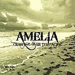 Amelia Crashing Over The Pacific