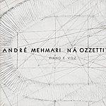 André Mehmari Piano E Voz