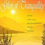 Celtic Spirit Glen Of Tranquillity