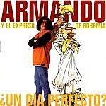 Armando Un Dia Perfecto?