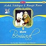 Mohd. Siddique Bemisaal Vol. 1