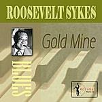 Roosevelt Sykes Gold Mine