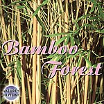 Columbia River Group Entertainment Nature's Rhythms: Bamboo Forest