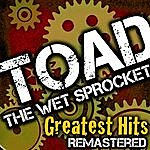Toad The Wet Sprocket Greatest Hits