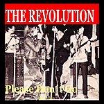 Revolution Please Don't Go