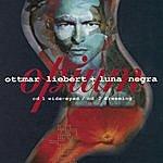 Ottmar Liebert Opium
