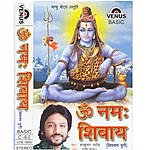 Roopkumar Rathod Om Namah Shivay (Shivnaam Dhuni) - Hindi