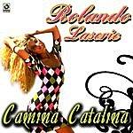 Rolando Laserie Camina Catalina