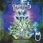 Geko Poison Flowers