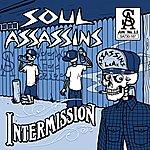Soul Assassins Intermission