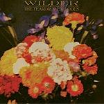 The Teardrop Explodes Wilder