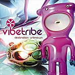 The Vibe Tribe Destination Unknown