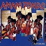 Amampondo Inyama