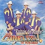 Los Canelos De Durango Exitos De Amor