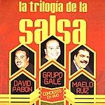 David Pabon La Trilogía De La Salsa -Concierto En Vivo-