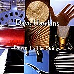 Dave Hawkins Driven To The Strings