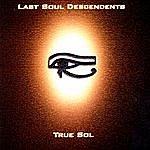 Last Soul Descendents True Sol