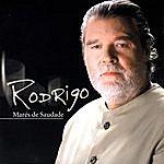 Rodrigo Marés De Saudade