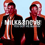 Milk & Sugar You Got Me Burnin' (5-Track Maxi-Single)(Feat. Ayak)