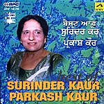 Surinder Kaur Best Of