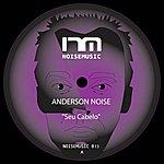 Anderson Noise Noisemusic 013