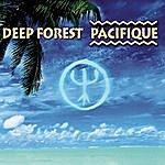 Deep Forest Pacifique