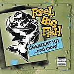 Reel Big Fish Greatest Hit And More (Parental Advisory)