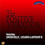 Junior Kelly Positive Vibration