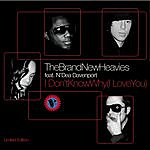 The Brand New Heavies I Don't Know Why I Love You - 4Hero Folk Soul Mix