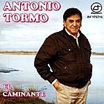Antonio Tormo El Caminante