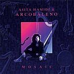 Asita Hamidi Mosaic